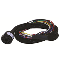 Reno Loop Detector Harness 10 Pin and 11 Pin Wire Harness
